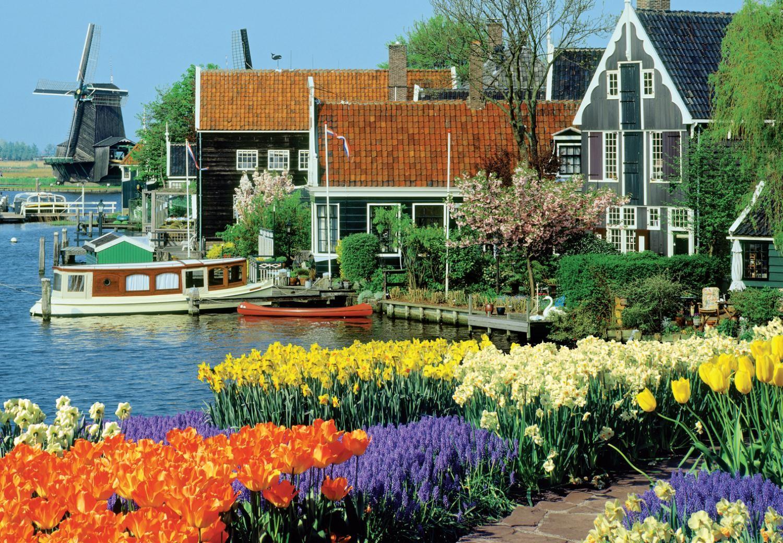 zaanse schanss - Города, которые стоит посетить в Голландии