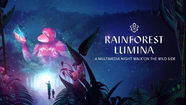Rainforest Lumina (2)