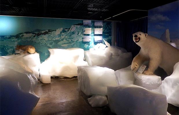 Okhotsk Sea Ice Museum